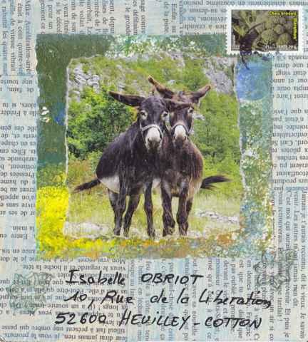 les deux ânes