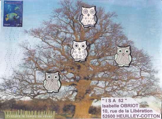 arbre au hiboux