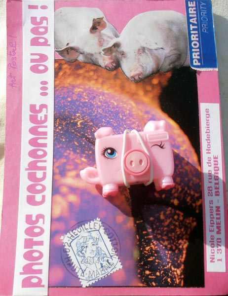 Piggy 25.02.14