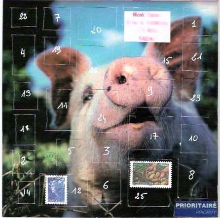 calendrier de l'avent porcin